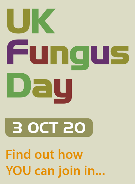 UK Fungus Day 3 Oct 20 - Find out how you can join in...