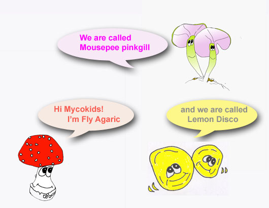 Mycokids cartoon 2