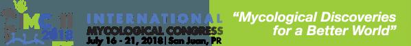 IMC-2018-logo385.png
